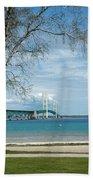Mackinac Bridge Park Beach Sheet