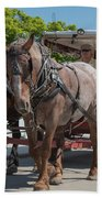 Mackinac Island Horse Carriage Beach Towel