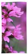 Macro Purple Flower Beach Towel