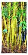 City Park Bamboo Grass Beach Towel