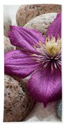 Clematis Flower On Meditation Stones Beach Towel