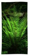 Magic Fern Beach Towel