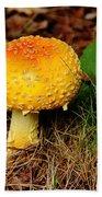 Magic Mushroom  Beach Towel