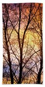 Magical Colorful Sunset Tree Silhouette Beach Towel