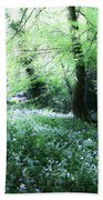 Magical Forest At Blarney Castle Ireland Beach Sheet