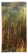 Magical Light On The Marsh Beach Towel
