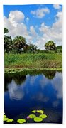 Magical Water Lily Pond 2 Beach Towel