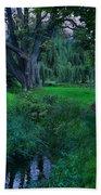 Magical Woodland Glade Beach Towel