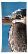 Magnificent Blue Heron Beach Towel