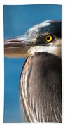 Magnificent Blue Heron Beach Sheet