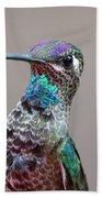 Magnificent Hummingbird Male Beach Towel