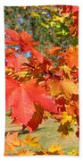 Magnificent Maple Leaves Beach Towel