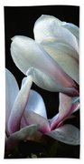 Magnolia And House Guest Beach Towel