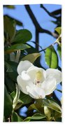 Magnolia Blooming 4 Beach Towel