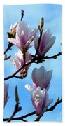 Magnolia Blooms Beach Towel