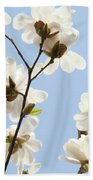 Magnolia Flowers White Magnolia Tree Flowers Art Spring Baslee Troutman Beach Towel
