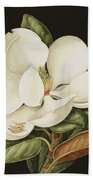 Magnolia Grandiflora Beach Towel by Jenny Barron