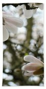 Magnolia Tree Flowers Pink White Magnolia Flowers Spring Artwork Beach Towel