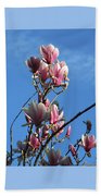 Magnolias And Blue Skies - Springtime In The Valley Beach Towel