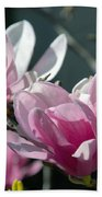Magnolias Are Blooming Beach Towel