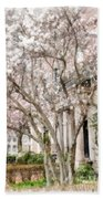 Magnolias In Back Bay Beach Towel