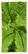 Maidenhair  Beach Towel