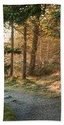 Maine Forest At Dusk Beach Towel