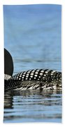 Maine Loon Beach Towel