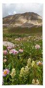 Majestic Colorado Alpine Meadow Beach Towel