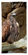 Majestic Eagle Beach Towel