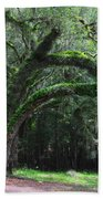 Majestic Fern Covered Oak Beach Towel