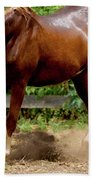 Majestic Horse Beach Towel