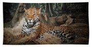 Majestic Leopard Beach Towel