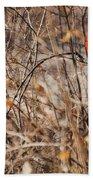 Male Northern Cardinal Beach Towel