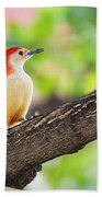 Male Red-bellied Woodpecker Beach Towel