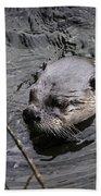 Male River Otter Beach Towel