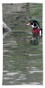 Drake Wood Duck On Pond Beach Towel
