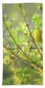 Male Yellow Warbler Beach Towel