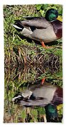 Mallard And Reflection Beach Towel