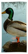 Mallard Beach Towel