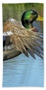 Mallard Digital Freehand Painting 3 Beach Towel