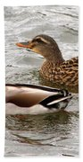 Mallard Duo Beach Towel
