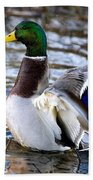 Mallard Moment Beach Towel