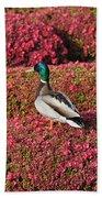 Mallard On A Floral Carpet Beach Towel