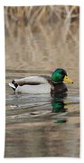 Mallards On The Pond Beach Towel