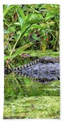 Mama Gator With Babies Beach Towel