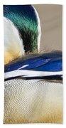 Mandarin Closeup Beach Towel