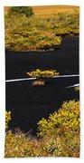 Mangrove River Panoramic Beach Towel