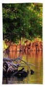 Mangroves Of Roatan Beach Towel