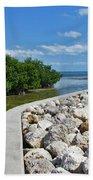 Mangroves Rocks And Ocean Beach Towel
